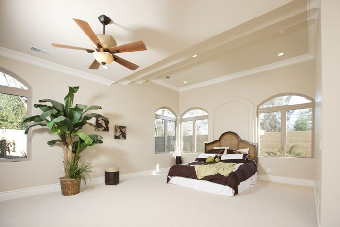 Best Hunter Ceiling Fan