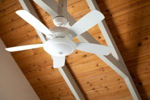 Best ceiling fan